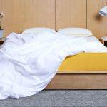 duvetSlide2 150x150 - Sleepeve.it il nuovo modo di acquistare il vostro materasso