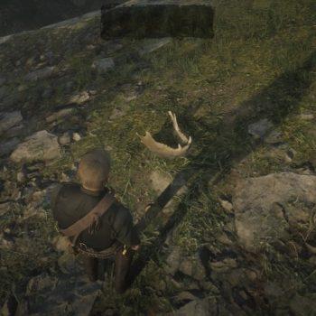 Osso Dinosauro 10 Luogo 350x350 - Red Dead Redemption 2, dove trovare tutte le ossa di dinosauro