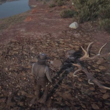 Osso Dinosauro 26 Luogo 350x350 - Red Dead Redemption 2, dove trovare tutte le ossa di dinosauro