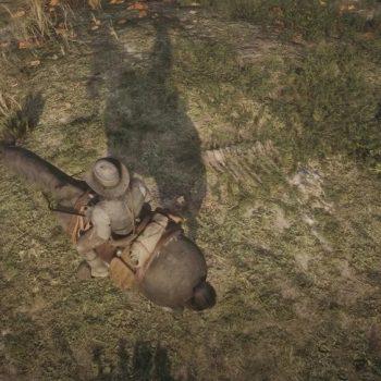 Osso Dinosauro 27 Luogo 350x350 - Red Dead Redemption 2, dove trovare tutte le ossa di dinosauro