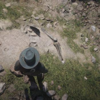 Osso Dinosauro 4 Luogo 350x350 - Red Dead Redemption 2, dove trovare tutte le ossa di dinosauro