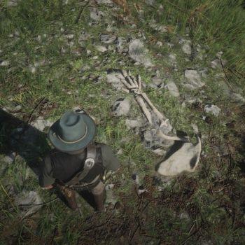 Osso Dinosauro 6 Luogo 350x350 - Red Dead Redemption 2, dove trovare tutte le ossa di dinosauro
