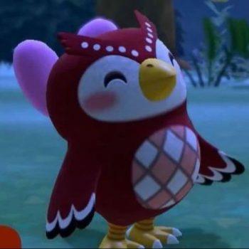 Cattura 1 350x350 - Animal Crossing: New Horizons - Guida alle Stelle cadenti