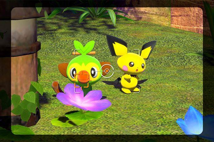 New Pokémon Snap Switch Pichu - Grookey