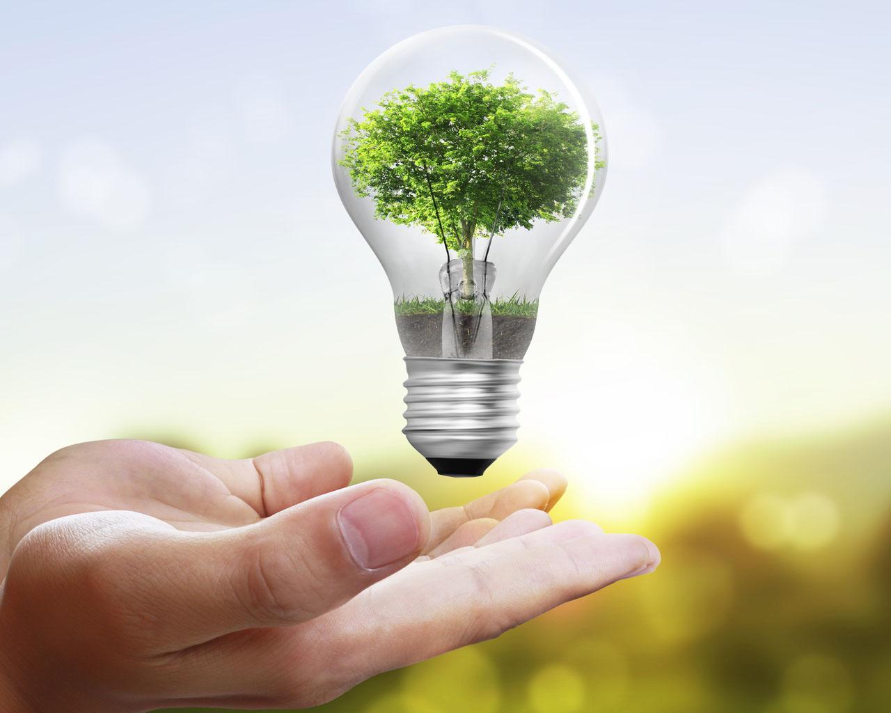 Energia green